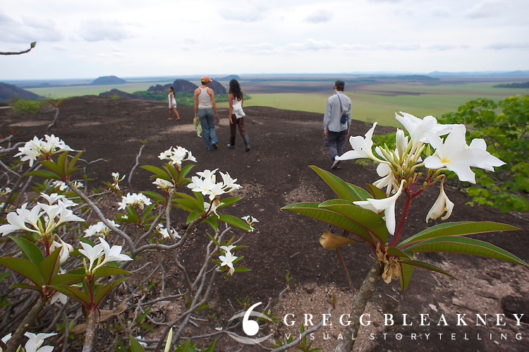 A group of tourists on top of a Tepuy - Orinoco - Colombia