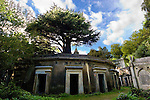 Highgate Cemetery London - Circle of Lebanon, named after the Lebanese Cedar on top!