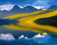 Evening reflections on Lake McDonald  Glacier National Park, Montana  Rocky Mountains  Mimulous guttatus  West Glacier area  July