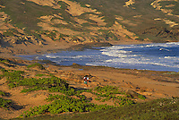 Moomomi dunes, Nature Conservancy land, Molokai
