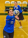 1 November 2015: Yeshiva University Maccabee Setter, Defensive Specialist, and team co-Captain Aliza Muller, a Senior from Los Angeles, CA, warms up prior to a match against the Saint Joseph College Bears at SUNY Old Westbury in Old Westbury, NY. The Bears shut out the Maccabees 3-0 in NCAA women's volleyball, Skyline Conference play. Mandatory Credit: Ed Wolfstein Photo *** RAW (NEF) Image File Available ***