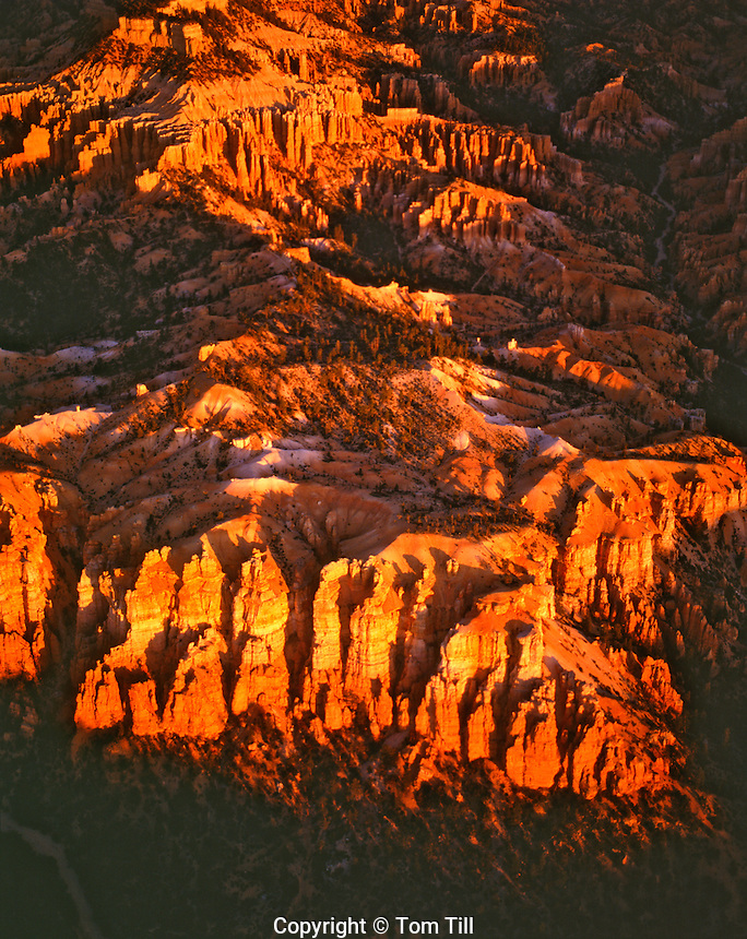 Aerial View of Bryce Cliffs at Sunrise, Bryce Canyon National Park, Utah