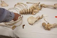 US Arizona Tucson Pima County Medical examiner resti di clandestini trovati nel deserto