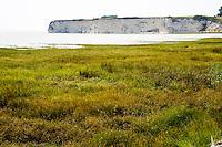 France, Talmont-sur-Gironde. White limestone cliffs.