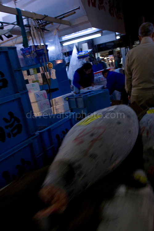 Tuna on a handcart being pulled through tokyo tsukiji fish for Wholesale fish market near me