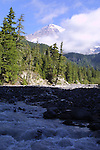 Tahoma River runoff from Mt. Rainier.  Mt. Rainier is heavily glaciated, dormant volcano surrounded by alpine parks. The 14,411 foot volcano which covers 228,480 acres was designated a National Park in 1899. Jim Bryant Photo. ©2010. All Rights Reserved.