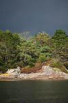 Grey clouds above the subtropical gardens of Garinish Island, Glengarriff, West Cork, Ireland