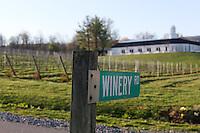 Luca winemaker at Barboursville Vineyards located in Barboursville, Va. Photo/Andrew Shurtleff