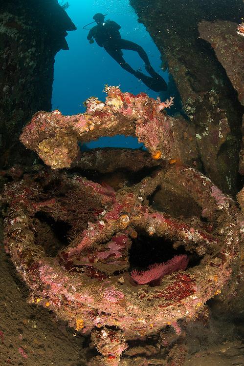 Coral encusted wreckage on the Liberty wreck, Tulamben, Bali