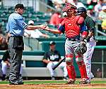 16 March 2009: Washington Nationals' catcher Wil Nieves gets a fresh ball from umpire Mike Estabrook during a Spring Training game against the Florida Marlins at Roger Dean Stadium in Jupiter, Florida. The Nationals defeated the Marlins 3-1 in the Grapefruit League matchup. Mandatory Photo Credit: Ed Wolfstein Photo