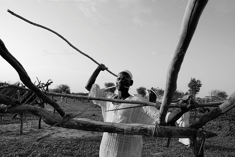 Abu Ajoura, South Darfur, August 2, 2004.Omar Abdoulaye Shakr builds up a new home. Protected by a small police force, a few 'Fur' farmers have begun returning to their small town, completely destroyed on March 28.