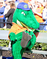 University of South Carolina Gamecocks vs University of Florida Gators, November 14, 2015