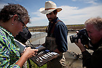 Members of the media photograph frozen juvenile salmon displayed by California Trout's Jacob Katz, center, in a rice field on Knaggs Ranch near Woodland, California, March 23, 2013. Research by UC Davis Center for Watershed Sciences, conservation science and advocacy organization California Trout, and the California Department of Water Resources shows that salmon raised in a floodplain have higher growth rates than those in a river or hatchery.