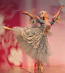 "Washington Ballet ""Sleeping Beauty"" at Cherry Blossom Festival"