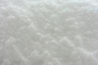 24 February 2008: Detail of fresh snow powder during a late winter storm in Lake Tahoe, Truckee Nevada California border in the Sierra Mountains.