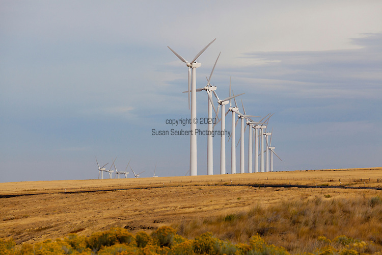 Wind farm along the Highway 206, from Condon to Dufur in Central Oregon