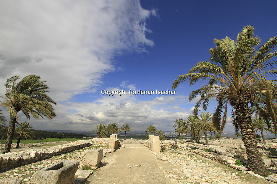 The southern stables at Tel Megiddo from the period of the Israeli kings