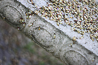 stone bench with seeds on it