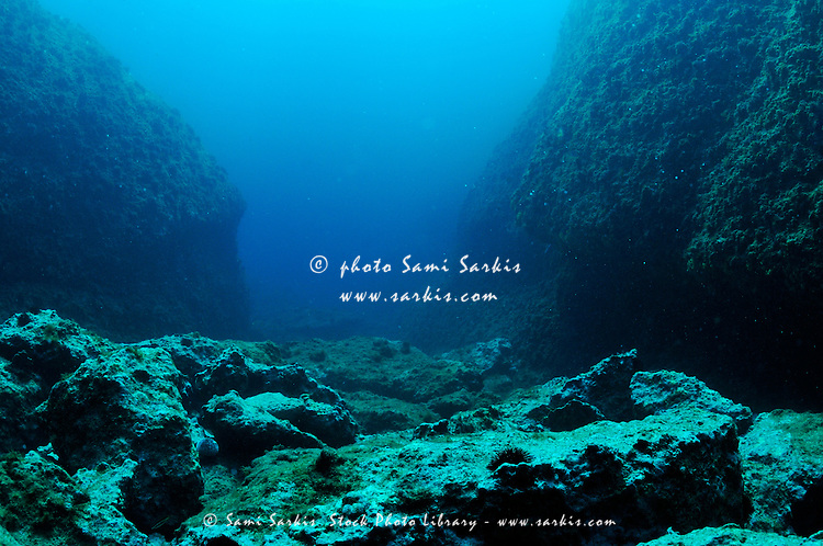 Rocks on ocean floor  underwater view  Mediterranean Sea  Riou Island    Underwater Ocean Rocks