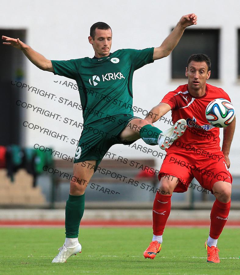 Fudbal season 2013-2014<br /> FK Crvena Zvezda pripreme<br /> Crvena Zvezda v Krka<br /> Savo Pavicevic (R)<br /> Novo Mesto, 07.12.2014.<br /> foto: Srdjan Stevanovic/Starsportphoto &copy;