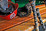 21 June 2008: Washington Nationals' batting helmets and bats rest in the dugout prior to a game against the Texas Rangers at Nationals Park in Washington, DC. The Nationals fell to the Rangers 13-3 in the second game of their 3-game inter-league series...Mandatory Photo Credit: Ed Wolfstein Photo