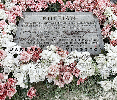 Ruffian (Reviewer Shenanigans, by Native Dancer), champion race filly, is buried at Belmont Park, just past the finish line.