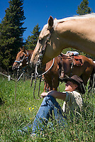 Mountain View, Alberta, Canada, July 2008. Cowboy Calin Duce on his horse. Rancher Dan Nelson takes us on a horse back trail ride in the hills connecting the Albertan prairie with the mountains of Waterton National Park. Photo by Frits Meyst/Adventure4ever.com