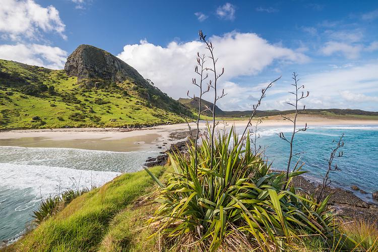 Spirits Bay, Northland, New Zealand - stock photo, canvas, fine art print