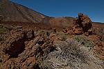 Lava fields,Parque nacional de las Cañadas,Tenerife, Canary islands, Spain