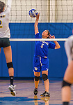 26 October 2014: Yeshiva University Maccabee Libero Shaina Hourizadeh, a Sophomore from Englewood, NJ, in action against the College of Mount Saint Vincent Dolphins, in Riverdale, NY. The Dolphins defeated the Maccabees 3-0 in the NCAA Division III Women's Volleyball Skyline matchup. Mandatory Credit: Ed Wolfstein Photo *** RAW (NEF) Image File Available ***