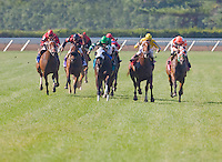 Horse racing, Monmouth Park Racetrack, New Jersey