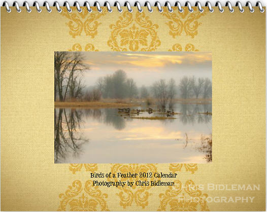 """Cover of the 2012 Birds of a Feather Calendar.  The cover photo is called """"Lazy afternoon in the refuge. and shows reflections of the bare trees and cloudy, colored sky is seen in the mirror surface of a lake with Canada Geese and Trumpeter Swans resting in Winter in the Ridgefield National Wildlife Refuge."""