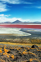 Laguna Colorada, Altiplano, southwest Bolivia <br />