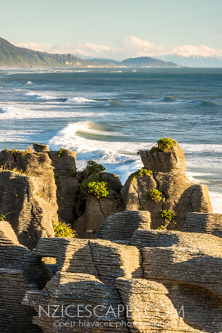 Morning photo of Pancake Rocks, limestone formations on wild coast in Punakaiki, Paparoa National Park, Buller Region, West Coast, New Zealand, NZ