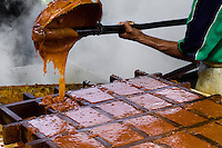 A Colombian peasant pours hot sugar cane juice into a wooden mold during the processing of panela in a rural sugar cane mill (trapiche) in San Agustín, Colombia, 18 April 2004. Panela, a solid block of raw, unrefined sugar, is made by cooking and evaporation of the sugar cane juice into a golden, sticky syrup which is then poured into the wooden molds and allowed to solidify. Having the taste like a cross between molasses and brown sugar, panela is served as a hot or cold infusion (aguapanela). Due to the large amounts of proteins, vitamins and minerals and thus, panela is believed to have healing powers. Cheaper than sugar, it is consumed by the majority of Colombians and it is a major source of calories for children from families with low socioeconomic status. With more than 70,000 farms that cultivate sugarcane for mills, panela production is an important economic activity in the Colombian countryside, employing around 350,000 people and being the second largest source of jobs after agricultural coffee production.