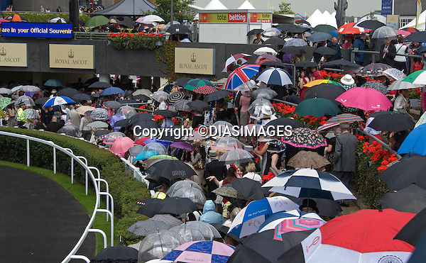 """UMBRELLAS ON LADIES DAY.Royal Ascot, the premier race event of the calendar, Ascot_16/11/2011.Mandatory Credit Photo: ©DIAS-DIASIMAGES..**ALL FEES PAYABLE TO: """"NEWSPIX INTERNATIONAL""""**..IMMEDIATE CONFIRMATION OF USAGE REQUIRED:.DiasImages, 31a Chinnery Hill, Bishop's Stortford, ENGLAND CM23 3PS.Tel:+441279 324672  ; Fax: +441279656877.Mobile:  07775681153.e-mail: info@newspixinternational.co.uk"""