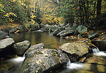 The Bear River above Screw Auger Falls in Grafton Notch State Park, Grafton Township, Maine, USA