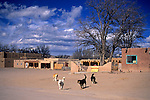 USA, New Mexico, Santa Fe. Pueblo dogs greet visitors to San Ildefonso Pueblo.