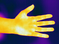 A Thermogram of a human hand.  The different colors represent different temperatures on the object. The lightest colors are the hottest temperatures, while the darker colors represent a cooler temperature.  Thermography uses special cameras that can detect light in the far-infrared range of the electromagnetic spectrum (900?14,000 nanometers or 0.9?14 µm) and creates an  image of the objects temperature..