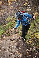 Female hiker hiking through forest trail, Lofoten islands, Norway