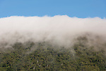 Clouds falling over Macalister Range