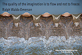 Quote:  The quality of the imagination is to flow and not to freeze.  By Ralph Waldo Emerson.  Meme.