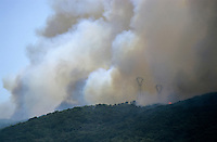 Forest fire and heavy smoke filling the landscape, Propriano, Corsica, France.