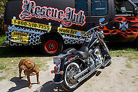 Rescue Ink, Long Island, New York, taettowierte Motoradgang, Verein zur Rettung mishandelter Hunde und anderer Tierarten..Rescue Ink, the animal rescue group that brings an in your face approach to the fight against animal abuse and neglect. The goups members are heavily tattooed and ride motorbikes. Their pitbull 'Rebel' (picture), who lives at their headquarters, was rescued from a dog fighting operation, where he was used as bait. He was near death when two members of Rescue Ink flew to Virginia to save him...Foto © Stefan Falke.