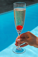 Welcome Champagne, Birkenhead House, Guest House, Hermanus, Western Cape, South Africa