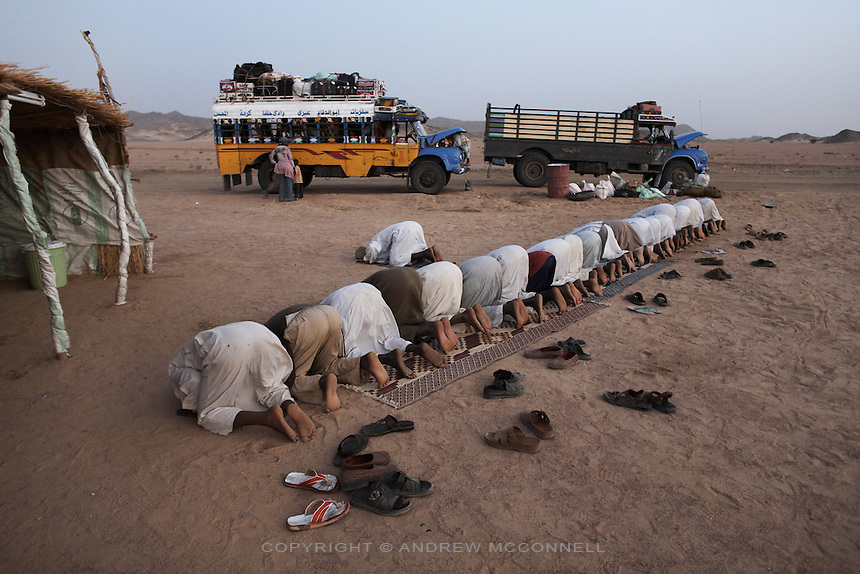 A bus journey breaks in the Nubian desert for evening prayers, north of Abri, on Wednesday, March 21, 2007. Sudan is approximately  70% Muslim.