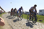 The peloton including Andre Greipel (GER) Lotto-Soudal and Arnaud Demare (FRA) FDJ on pave sector 17 Hornaing a Windignies during the 115th edition of the Paris-Roubaix 2017 race running 257km Compiegne to Roubaix, France. 9th April 2017.<br /> Picture: Eoin Clarke | Cyclefile<br /> <br /> <br /> All photos usage must carry mandatory copyright credit (&copy; Cyclefile | Eoin Clarke)