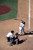 OAKLAND, CA - Rickey Henderson of the Oakland Athletics in action at the Oakland Coliseum in Oakland, CA in 1994. Photo by Brad Mangin