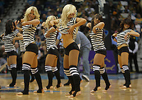 Jan 08, 2010; New Orleans, LA, USA; New Orleans Hornets Honeybees dancers perform during the second half of a game against the New Jersey Nets at the New Orleans Arena. The Hornets defeated the Nets 103-99. Mandatory Credit: Derick E. Hingle-US PRESSWIRE.