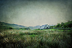 Romantic English landscape with grassland and an old stone barn. Painterly effect with texture.